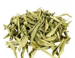 Стевия медовая трава (100 гр)